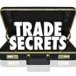 Trade Secrets Briefcase Business Proprietary Information Intelle — Stock Photo #31285437