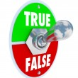True Vs False Toggle Switch Choose Honesty Sincerity — Stock Photo
