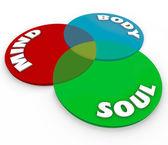 Mind Body Soul Venn Diagram Total Wellness Balance — Stock Photo