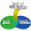 Best of Both Worlds Fresh Ideas Trusted Experience — Stock Photo