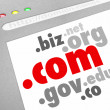 Dot-Com Domain Name Suffixes Website Registration — Stok fotoğraf