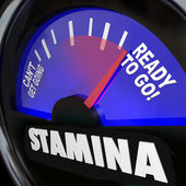 Stamina Fuel Gauge Drive Power Energy Increase — Stockfoto