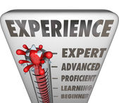 Experience Measurement Expert to Novice Level — Stock Photo