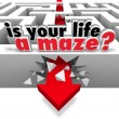 Stock Photo: Is Your Life Maze Directionless Need Help Guidance