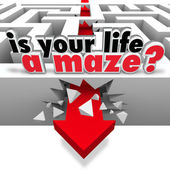 Is Your Life a Maze Directionless Need Help Guidance — Stock Photo