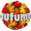 Autum Leaves Changing Colors Sphere Season Change — Foto Stock