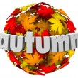 Autum Leaves Changing Colors Sphere Season Change — Zdjęcie stockowe