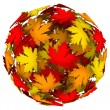 Leaves Changing Color Autumn Fall Leaf Ball — Стоковое фото