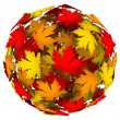 Foto de Stock  : Leaves Changing Color Autumn Fall Leaf Ball