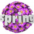 Flower Ball Pink Floral Sphere Pattern Background — Foto de stock #39071395