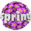 Flower Ball Pink Floral Sphere Pattern Background — Stock Photo #39071395