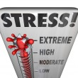 Stress Thermometer Overwhelming Too Much Work Load — Stock Photo #39072497