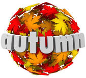 Autum Leaves Changing Colors Sphere Season Change — Stock Photo