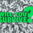 Stock Photo: Will You Survive Question