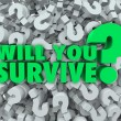 Will You Survive Question — Photo #41552295