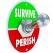 Survive Vs Perish — Photo #41552319