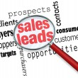 Stock Photo: Sales Leads