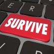 Stockfoto: Survive Key