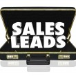 Stock Photo: Sales Leads Briefcase