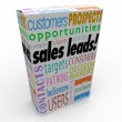 Sales Leads Box — Stock Photo #41552517