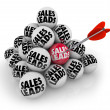 Sales Leads Pyramid Balls — Stock Photo #41552519