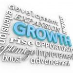 Growth 3d Word B — Stock Photo