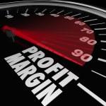 Profit Margin Speedometer — Stock Photo #43551993