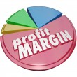 Profit Margin Pie Chart — Stock Photo