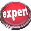 Expert Red Button Light Advertise Expertise Experience Skills — Stock Photo