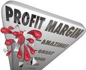 Profit Margin Thermometer Measuring — Stock Photo