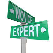 Expert Vs Novice words — 图库照片