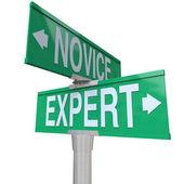 Experto vs palabras novatos — Foto de Stock