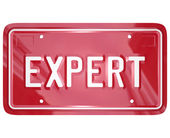 Expert Word License Plate Car Mechanic Engineer Technician Repai — Stock Photo