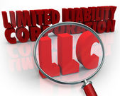 Magnifying Glass Limited Liability — Foto de Stock