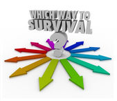 Which Way to Survival Question Arrows Pointing Way — Stock Photo