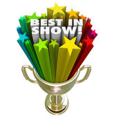 Best in Show Trophy Award — Stock Photo
