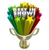 Best in Show Trophy Award — Stock Photo