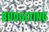 Budgeting word in 3d green letters — Stock Photo