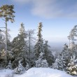 Top of mountain under snow — Stock Photo
