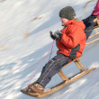 Sledding — Stock fotografie #12777044