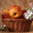 Apples and flowers — Stock Photo #13533258