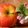 Apples and flowers — Stock Photo #13533398