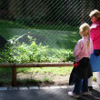 In the zoo — Stock Photo