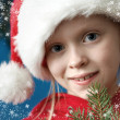 Christmas portraits — Foto Stock