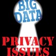 Big Data privacy security IT issues — Stok Vektör