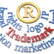 Trademark words around IP R symbol — 图库照片