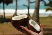 Coconut in hand — Stock Photo