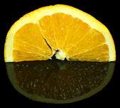 ломтик оранжевый плод — Стоковое фото