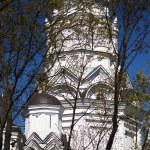 Orthodox church — Stock Photo #45787549