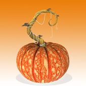 Pumpkin halloween. — Stock Photo
